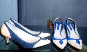 azul y pitón